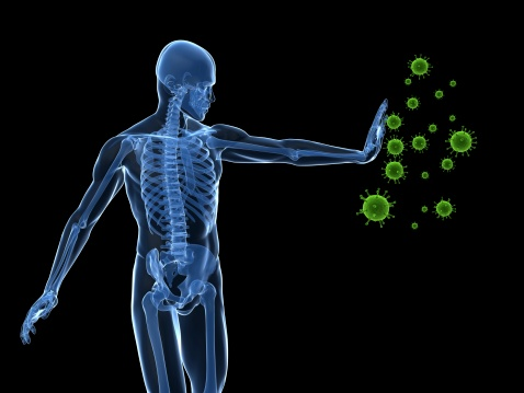 Boosting Your Immunity – 12 Areas of Focus