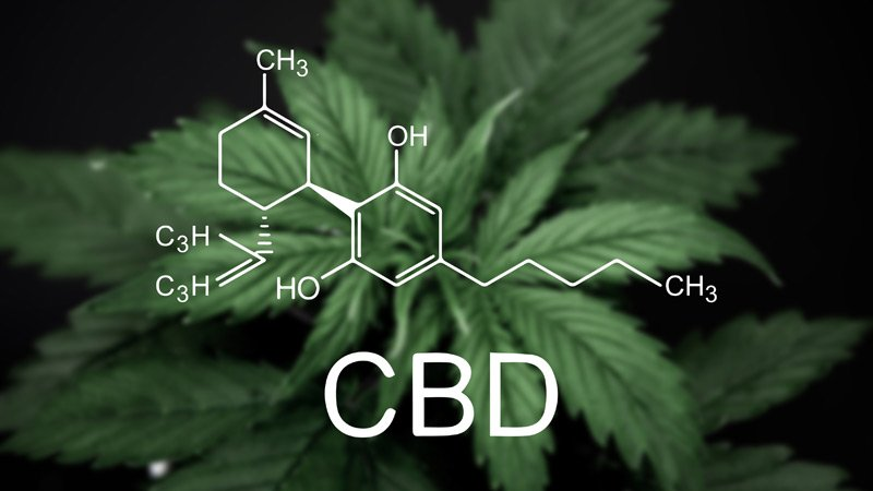 CBD is a Category – Not A Product: Let Me Explain