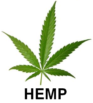 4 Ways to Use Hemp Oil / CBD