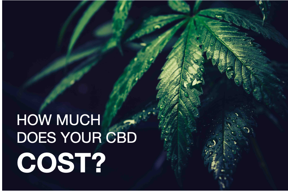 3 Steps to Understanding How Much Your CBD Costs